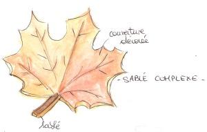 SABLE COMPLEXE